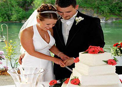 Wedding Reception DJ Hire, Professional